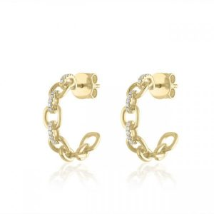 Chain Link Hoop Earrings gift