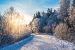 snowy road in winter forest at sunrise